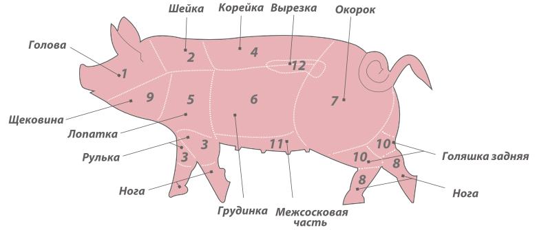 части мяса свинины картинки профили